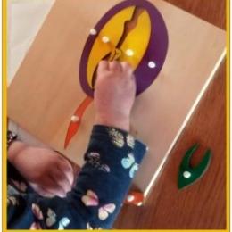 Preschool near you Montessori  knowledge of the world - biology